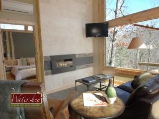 Comfortable 1 bedroom House in Bryson City - Bryson City vacation rentals