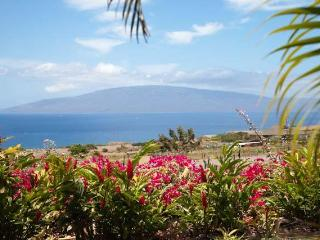 180 degree Ocean & Mountain Views on 6 Acre Farm! - Lahaina vacation rentals