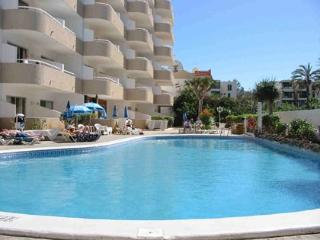 Nice Playa de las Americas Studio rental with Internet Access - Playa de las Americas vacation rentals