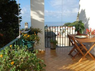 Beautifull Apartment, Seaview, Center, no stairs - Capri vacation rentals