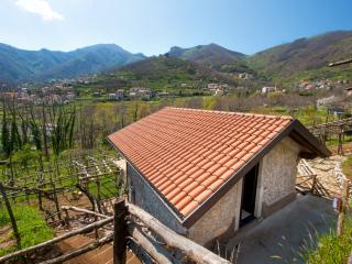 Nice 1 bedroom House in Tramonti - Tramonti vacation rentals