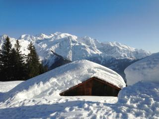 MONTCHALETBLANC near Chamonix - Passy vacation rentals