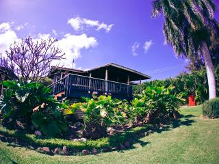 Bamboo House - Haleiwa vacation rentals