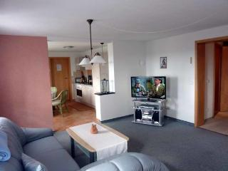 Nice Condo with Internet Access and Dishwasher - Klingenthal vacation rentals