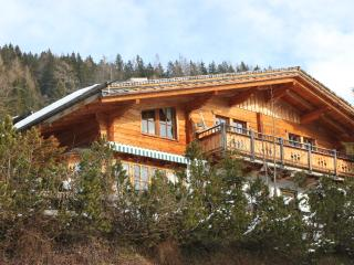 Perfect 5 bedroom Chalet in Muhlbach am Hochkonig - Muhlbach am Hochkonig vacation rentals