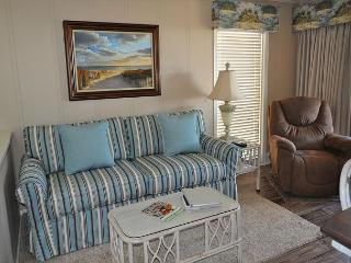 Ocean Dunes Villa 110 - 2 Bedroom 2 Bathroom Oceanfront Flat - Hilton Head vacation rentals