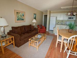 Ocean Dunes Villa 217 - 2 Bedroom 2 Bathroom Oceanfront Flat Hilton Head, SC - Hilton Head vacation rentals