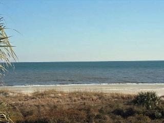Seaside Villa 226 - 1 Bedroom 1 Bathroom Oceanfront Flat  Hilton Head, SC - Hilton Head vacation rentals
