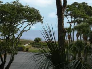 Seaside Villa 250 - 1 Bedroom 1 Bathroom Oceanside Flat  Hilton Head, SC - Hilton Head vacation rentals