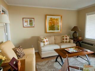 Ocean Dunes Villa 215 - 1 Bedroom 1 Bathroom Oceanfront Flat - Hilton Head vacation rentals