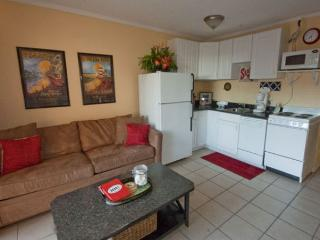 Seaside Villa 139 - 1 Bedroom 1 Bathroom Oceanside Flat Hilton Head - Hilton Head vacation rentals