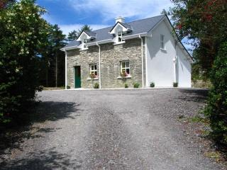 Perfect Cottage with Internet Access and Television - Kenmare vacation rentals