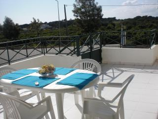 Sunny Holiday Apartment w/pool, close to beach - Albufeira vacation rentals