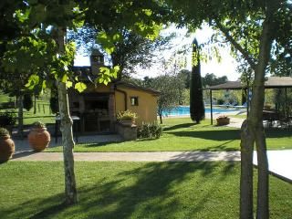 Charming Condo with Shared Outdoor Pool and DVD Player - Province of Arezzo vacation rentals