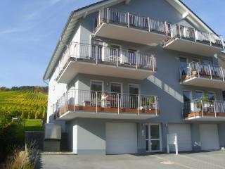 Nice Condo with Balcony and Central Heating - Bernkastel-Kues vacation rentals