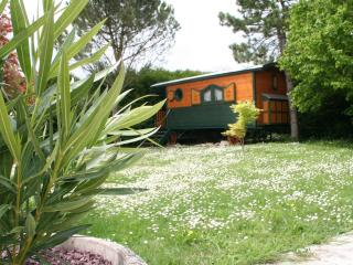 Nice Guest house with Internet Access and A/C - La Jarrie vacation rentals