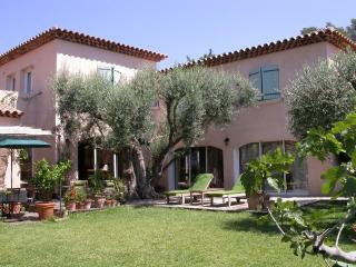 7 bedroom House with Internet Access in Ollioules - Ollioules vacation rentals