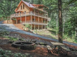 MI CASA ES SU CASA- 3 BR/ 2 BA PRIVATE LUXURY CABIN WITH ACCESS TO FIGHTINGTOWN CREEK (A TROPHY TROUT STREAM), SLEEPS 6, WIFI, G - North Georgia Mountains vacation rentals