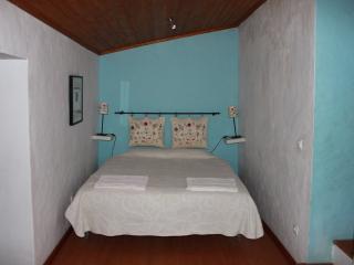 Quinta da Azervada -Xico Mulas - Santarem vacation rentals
