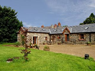 Charming 2 bedroom Cottage in Tinahely - Tinahely vacation rentals