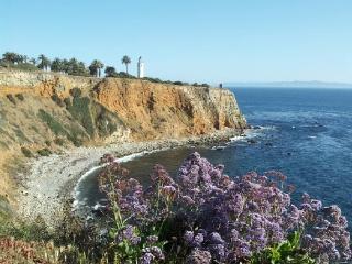 Amazing Beach Cliffs Location! - Los Angeles vacation rentals