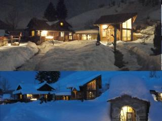 Nice Ski chalet with Internet Access and Grill - Borovets vacation rentals