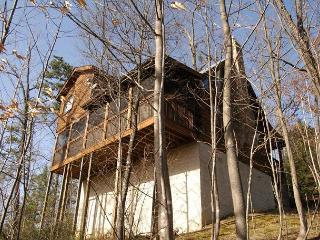 2 Bed Pet Friendly Cabin, 6 miles to town Gnatty Branch Village Pigeon Forge - Sevierville vacation rentals