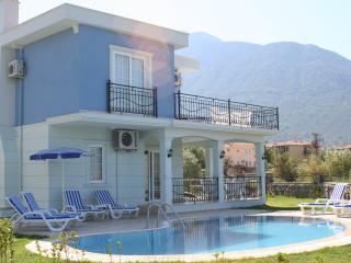 Lovely 3 bedroom Villa in Ovacik - Ovacik vacation rentals