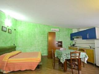 Casa Manilio - Image 1 - Manarola - rentals