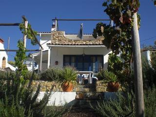 Casa do Pomar - Figueiro dos Vinhos vacation rentals