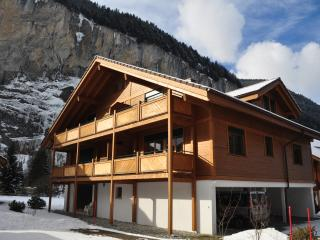 Bright Condo with Internet Access and Television - Lauterbrunnen vacation rentals