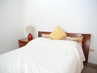 Lovely 2 Bed Apt, Prime Old San Juan - San Juan vacation rentals