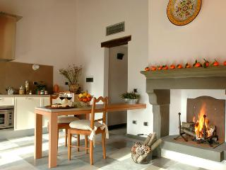 Nice Barberino Val d' Elsa Studio rental with DVD Player - Barberino Val d' Elsa vacation rentals