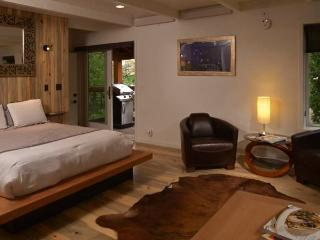 WILLOWS #B5 - Snowmass Village vacation rentals