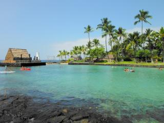 Nice Condo with Waterfront and Shared Outdoor Pool - Kailua-Kona vacation rentals
