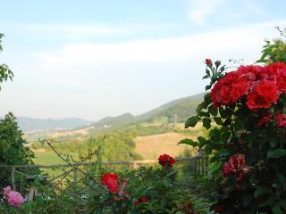 Pietra Rosa - Urbino vacation rentals