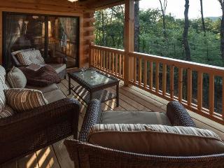 Mountain Vacation Rental That`s Pet Friendly - Ellijay vacation rentals