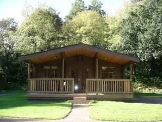 Willowbank Lodges/Bullrush - Pewsey vacation rentals