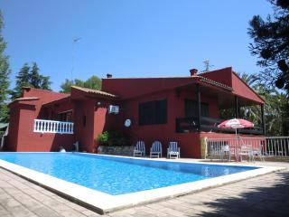 Spacious villa with gardens, pool and games room - Chiva vacation rentals