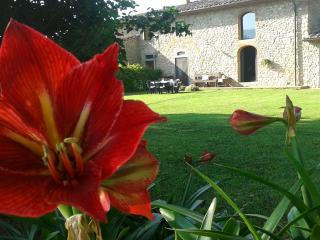 nice cottage Florence countryside - Vicchio vacation rentals