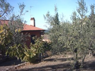 4 bedroom Townhouse with Linens Provided in Montespertoli - Montespertoli vacation rentals