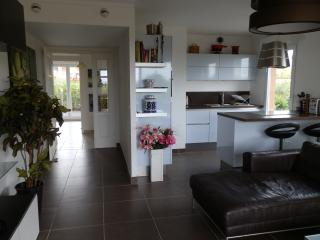 Seaside apartment Juan Flore - Juan-les-Pins vacation rentals