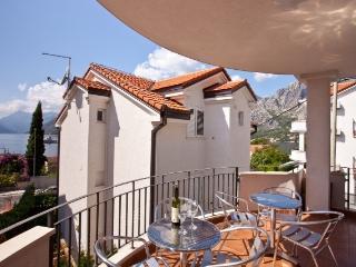 Apartment in Ljuta Montenegro - Dobrota vacation rentals