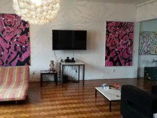 Art gallery penthouse Ipanema up to 11 people with - State of Rio de Janeiro vacation rentals