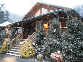Native Winds Cabin -- Romantic Log Cabin with a Fireplace in the Bedroom, Hot Tub, View, and Wi-Fi - Only 10 Minutes from Harrah - Bryson City vacation rentals