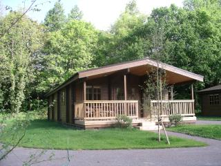 Willowbank Lodges/Dragonfly - Pewsey vacation rentals