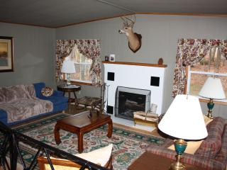 Pinewoods Cabin, Lake Pleasant beach access - Speculator vacation rentals