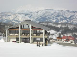 Large room in ideal ski lodge - Nozawaonsen-mura vacation rentals