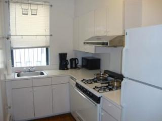 Lovely 3 Bedrooms Apartment in East Village - New York City vacation rentals