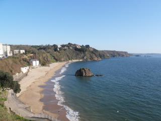 2A Arcadia House - Tenby vacation rentals